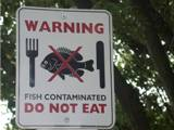 Water Contaminated with Mercury Sign