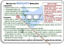 Mercury Indicator